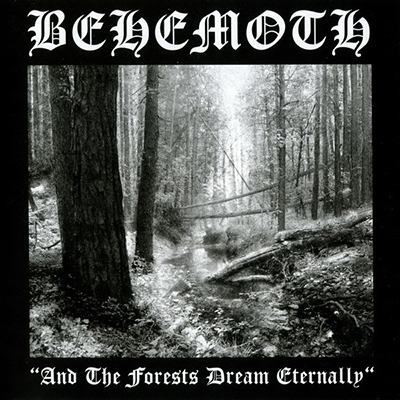 And the Forests Dream Eternally CD