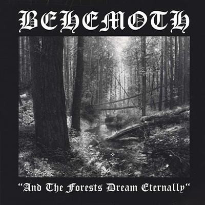 And the Forests Dream Eternally LP