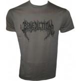 BENEDICTION logo [grey] - TS