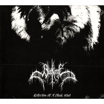Reflection of a Bleak Mind CD DIGI