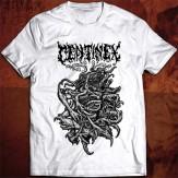 Doomsday Rituals - TS