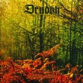 Autumn Aurora CD