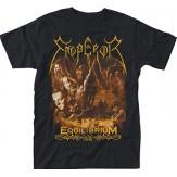 IX Equilibrium - TS