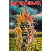 Iron Maiden - FLAG