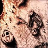 The Death of the Sun CD