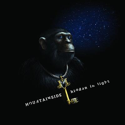 Hidden In Light LP
