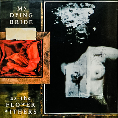 As The Flower Withers CD