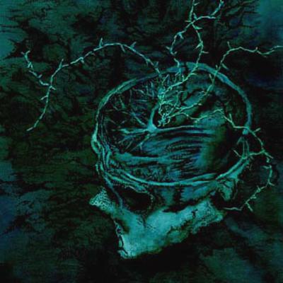 Instinct: Decay CD