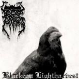 Blackeon Lightharvest LP