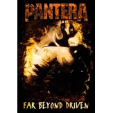 Far Beyond Driven - FLAG