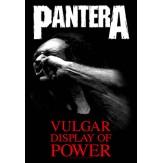 Vulgar Display of Power - FLAG