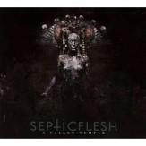 A Fallen Temple CD DIGI