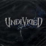 Undivided MCD