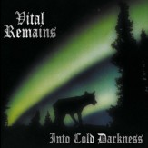 Into Cold Darkness LP
