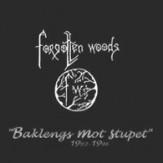 Baklengs mot Stupet [1992-1996]