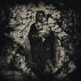 Necroangel's Revelations MLP