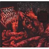 Black Blood Vomitorium